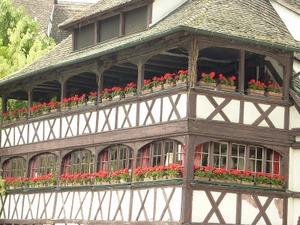 Strasbourg_4